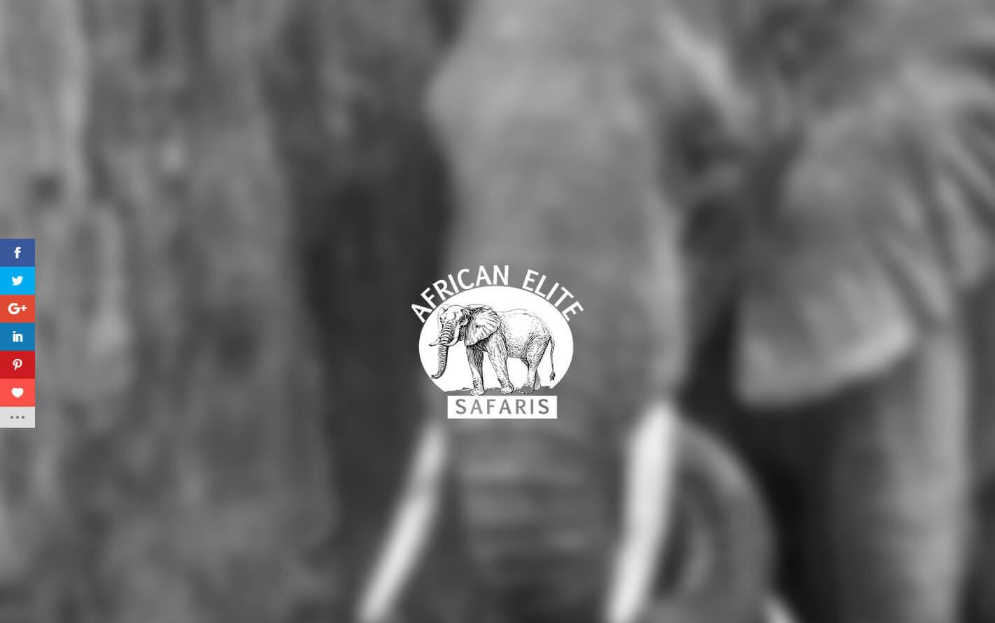 African Elite Safaris